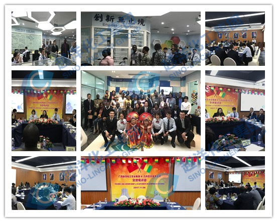 The Young Diplomats of Guinea Visited Sino-Linchem Co., Ltd